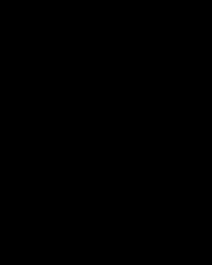 Letter S of triangle font - Pattern Typeface No. 9 Medium Regular